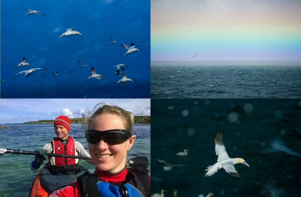 Noordzee Exploratie 2014