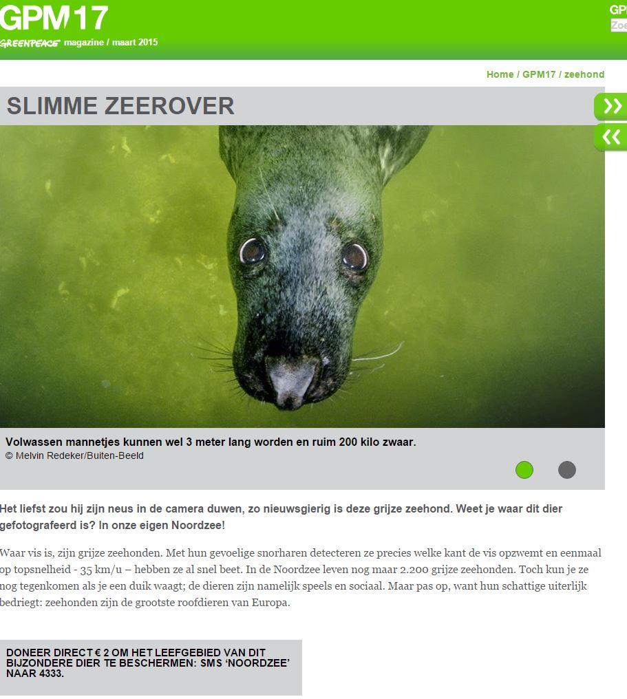 Campagne Greenpeace: Noordzee zeehonden