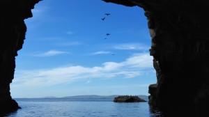 Uitzicht vanuit grot Bressay