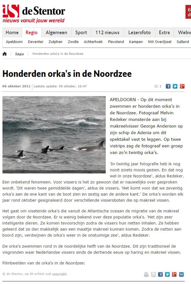 Stentor nieuwsbericht over orka's in de Noordzee