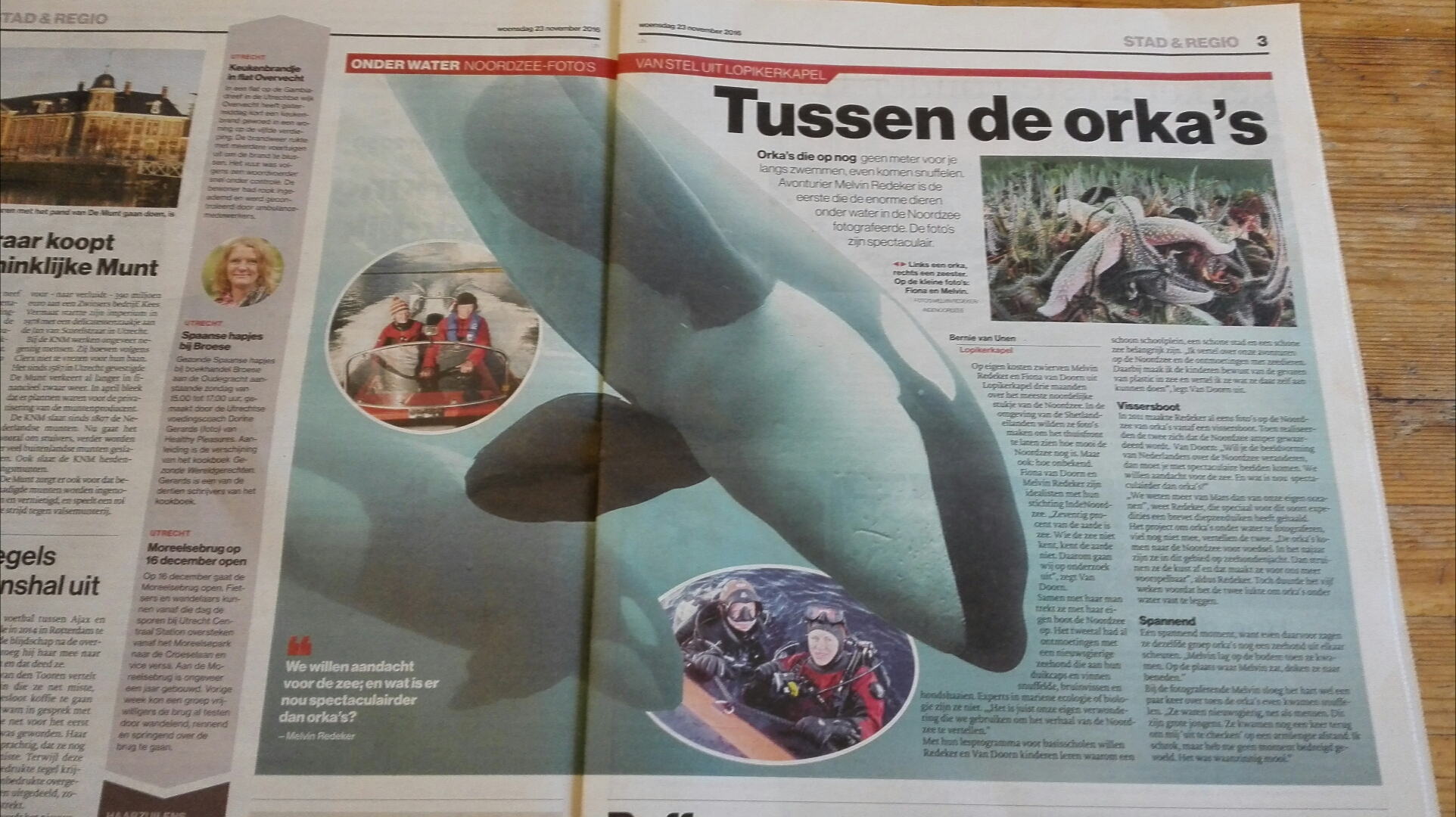 In de media: AD regio Utrecht over orka's in de Noordzee