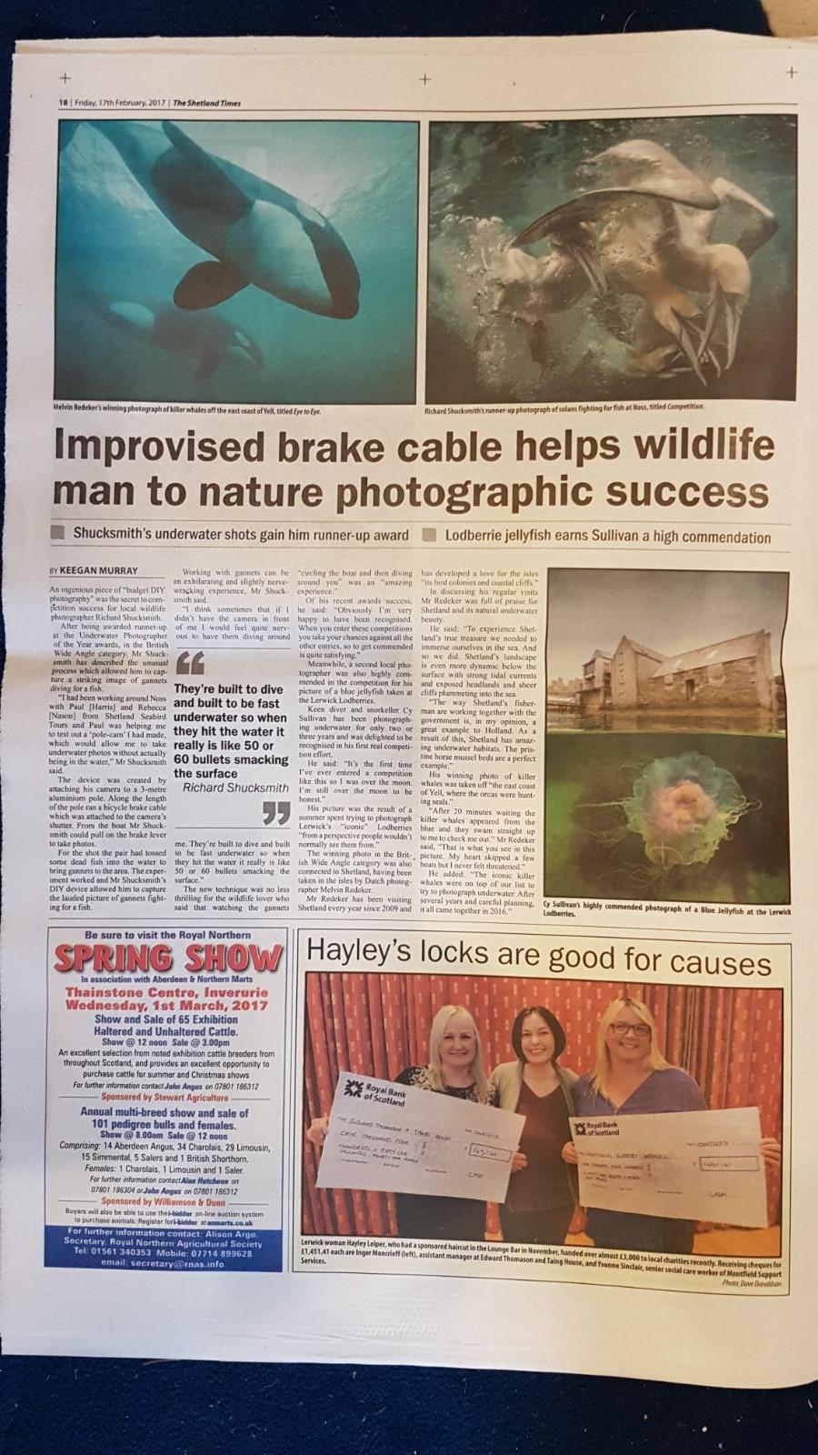 Shetland Times: Melvin Redeker's winning photograph of killer whales